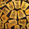 藤井四段に続け!初心者でも楽しめる【オススメの将棋セット】人気&売れ筋ランキング・トップ4