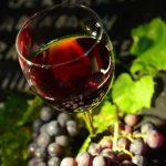 【くずまきワイン】山ぶどうのワインは美味しくて体にも良いのだ!